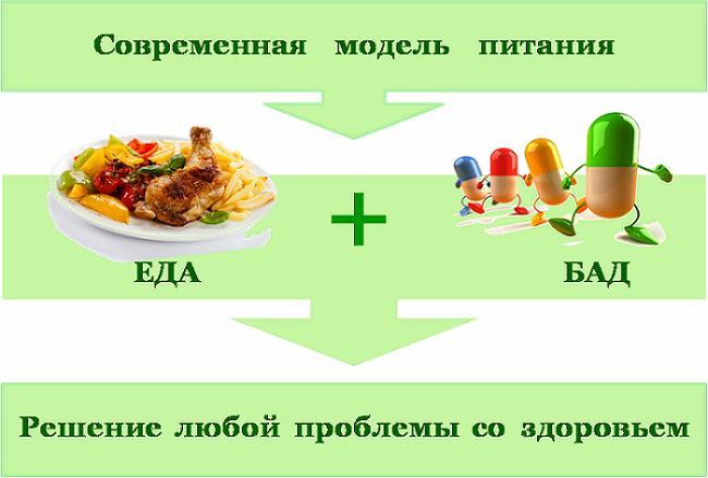 современная модель питания