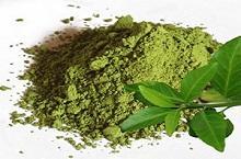 экстракт зел. чая